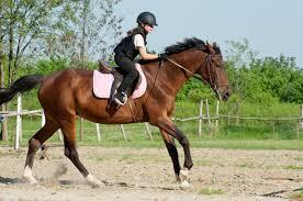 girl riding the horse