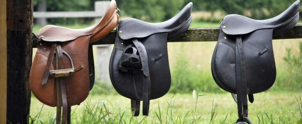 understanding-the-horse-saddle