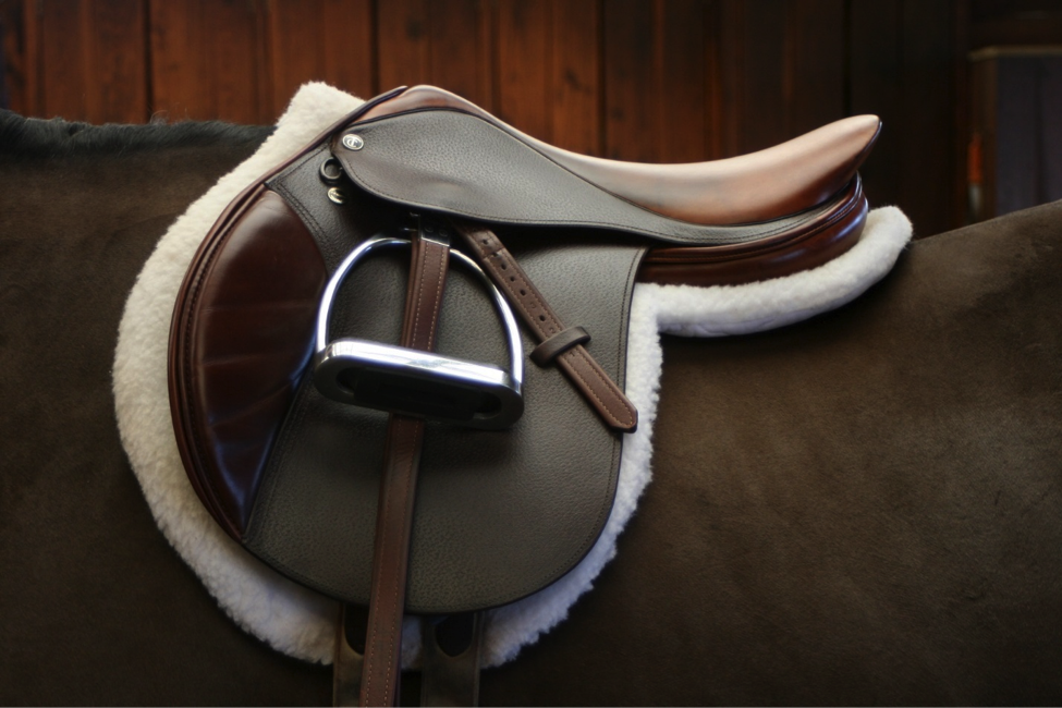 A close contact jumping saddle with extra cushioning for impact absorption.