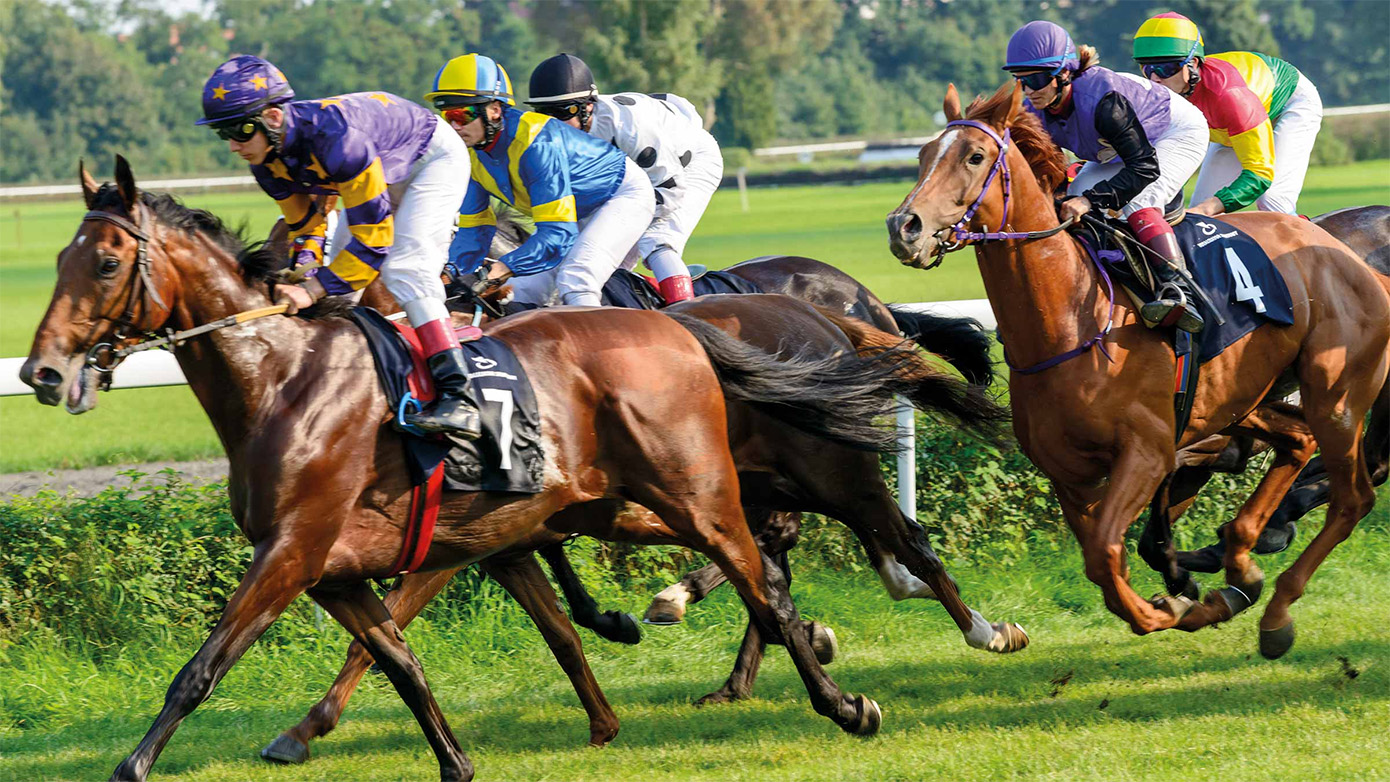 The Right Environment And Climate For Horse Racing